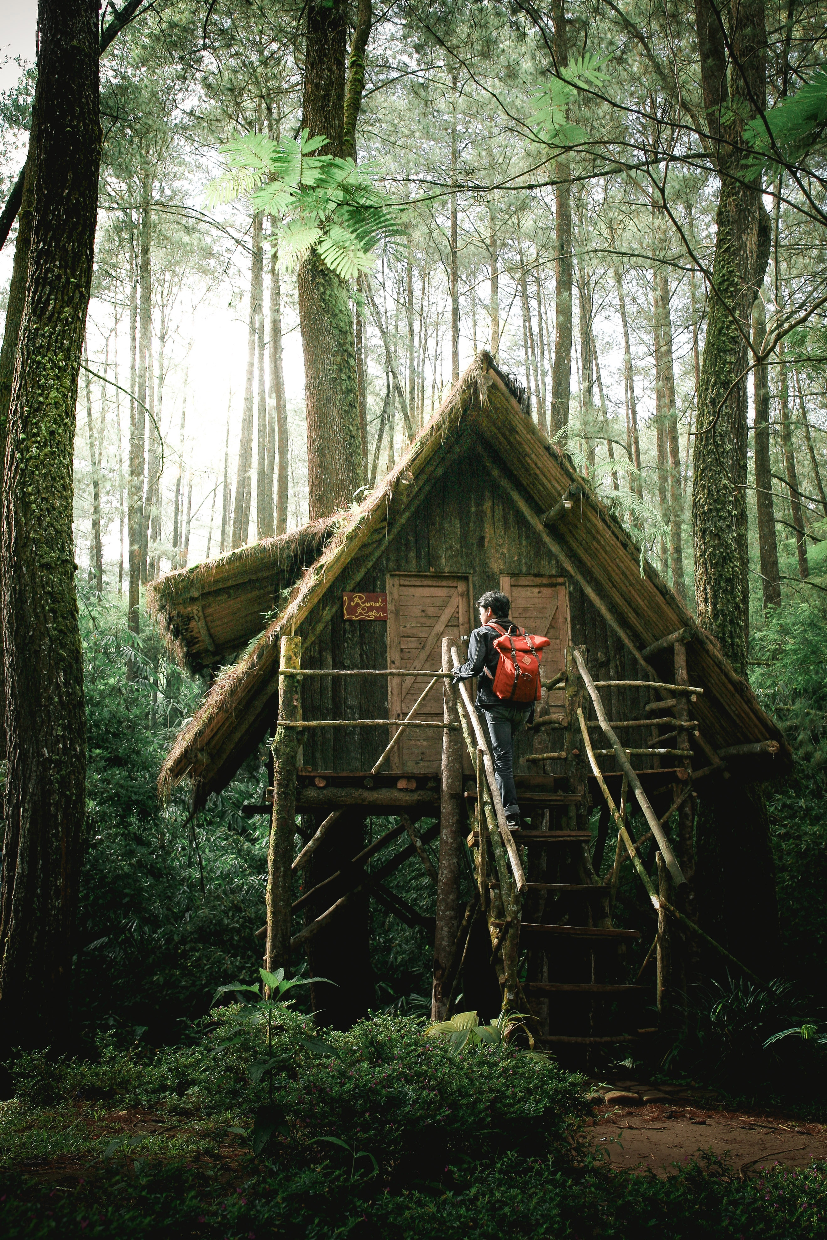 5 Essential Outdoor Survival Tips Shelter Pic