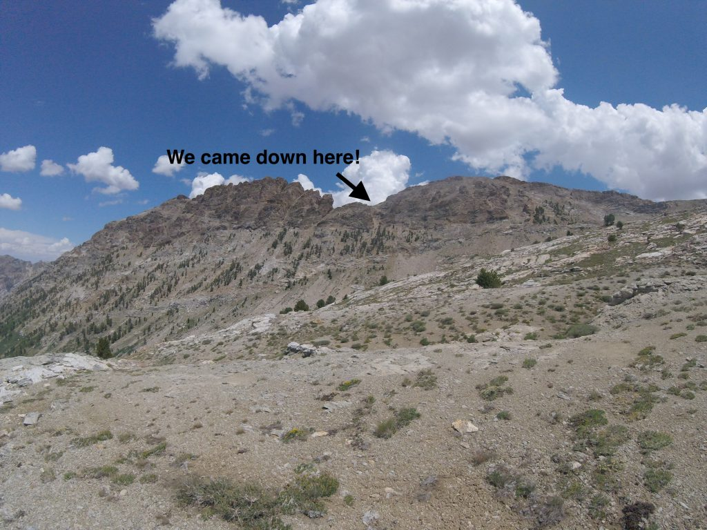 hiking the ruby mountains - view back to pride rock pass from Thomas Canyon