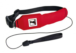 best rectractable dog leash light - rad dog product photo
