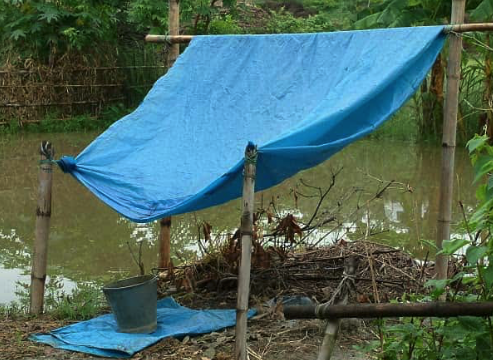how to get clean water in the wild - rainwater collection