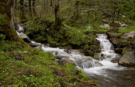 how to get clean water in the wild - streams