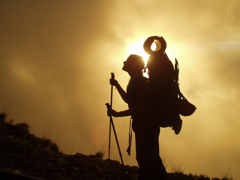 Best Leki Trekking Poles Featured Image