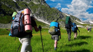 the pros and cons of hiking poles - environmental impact