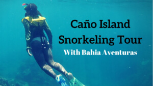 Why You Should Hire a Guide for Your Next Adventure - Cano Island Snorkeling Tour