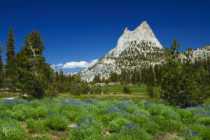 A Day on a JMT Thru Hike - best time to go PC Robert Cross via Flickr