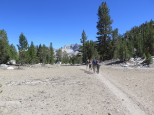 A Day on a JMT Thru Hike - into the afternoon sun PC Tucker Ballister