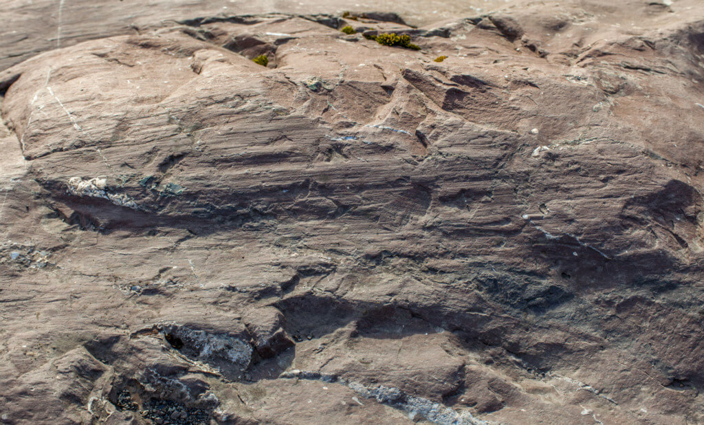 school of stone how was lake tahoe formed - glacial striations PC Steve Batch