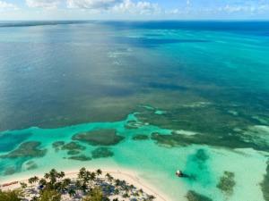 School of Stone A Tropical Past - bahamas PC Fernando Jorge via Unsplash