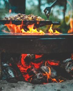 10 Healthy Camping Food Recipes - veggie stir fry PC Daniel Norris via Unsplash