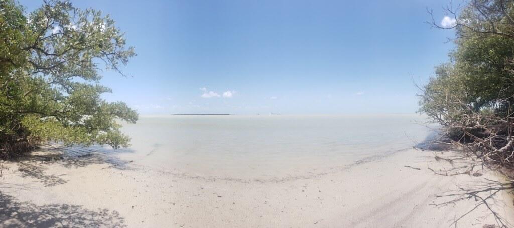 Beach On The Coastal Prairie Trail